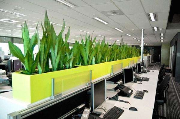 Thiết kế văn phòng hiện đại có tính thẩm mỹ cao
