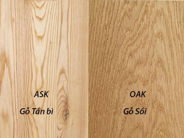 Gỗ sồi và gỗ tần bì nhìn khá giống nhau