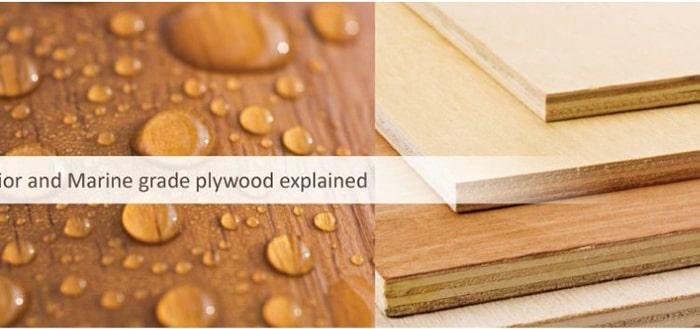 Bề mặt và mặt cắt gỗ ván dán